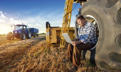 Cum sa pui la punct o afacere de succes in agricultura
